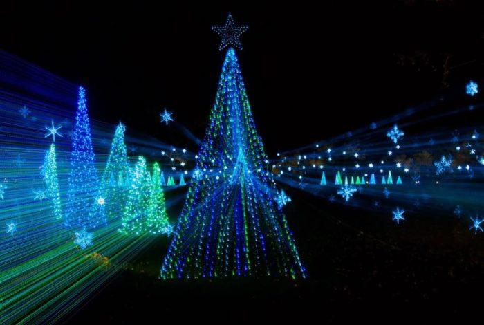 Christmas Drive Through Lights