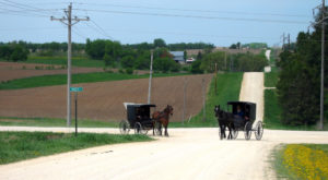The Tiny Amish Town In Minnesota That's The Perfect Day Trip Destination