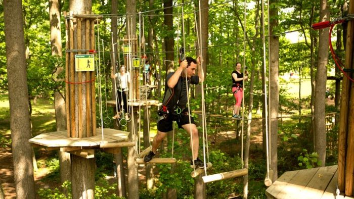 Go Ape Is A Treetop Trail In Missouri That Will Take Your