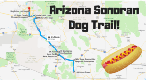 10 Stops Everyone Must Make Along Arizona's Sonoran Dog Trail
