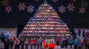 Oregon's Singing Christmas Tree Is Truly A Sight To See