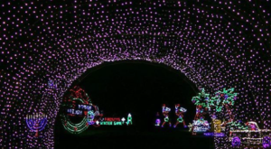 You Will Love This Dreamy Ride Through The Longest Drive-Thru Light Show In Ohio