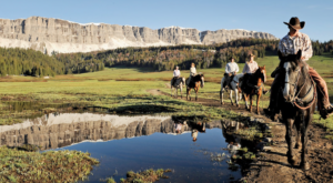 Disney's New Tours Of Yellowstone Are The Best Way To See The Park With Your Kids