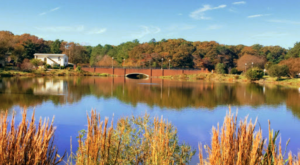 This Lakeside Park In Delaware Is So Hidden You'll Probably Have It All To Yourself