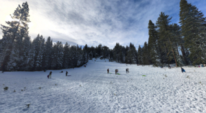 The Epic Sledding Hill In Northern California That You'll Want To Slide Down Again And Again