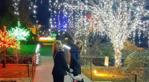Everyone Should Take This Spectacular Holiday Trail Of Lights In North Carolina This Season