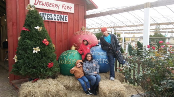 Beginning on November 23, Dewberry Farm will transform into a winter  wonderland of magic and whimsy. Over 40 festive attractions will all be  included in the ... - Dewberry Farm Is The Best Christmas Tree Farm In Texas