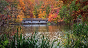 This Easy Fall Hike In Alabama Is Under 2 Miles And You'll Love Every Step You Take