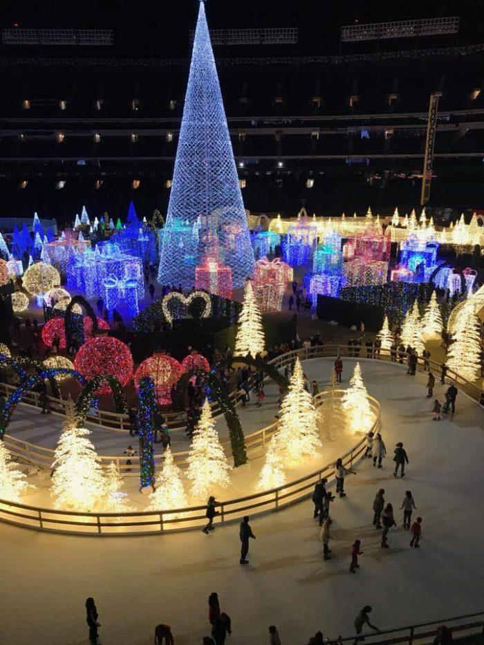 Christmas Light Rentals