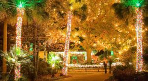 The Beautiful Christmas Walk In South Carolina You'll Want To Experience Again And Again