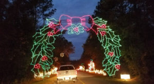 You Will Love This Dreamy Ride Through The Largest Drive-Thru Light Show In South Carolina