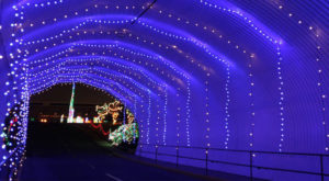 You Will Love This Dreamy Ride Through The Largest Drive-Thru Light Show In North Carolina