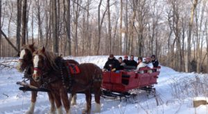 This 50-Minute Michigan Sleigh Ride Takes You Through A Winter Wonderland