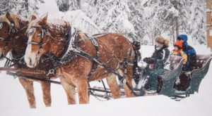 This 25-Minute Oregon Sleigh Ride Takes You Through A Winter Wonderland