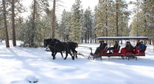 This 30-Minute Utah Sleigh Ride Takes You Through A Winter Wonderland