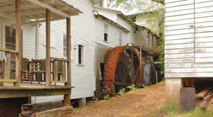 See Cornmeal Being Made At This Water-Powered Grist Mill In South Carolina