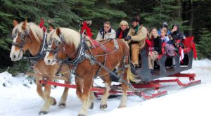 This 45-Minute Northern California Sleigh Ride Takes You Through A Winter Wonderland