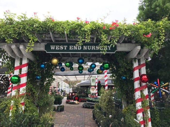 Located In San Rafael West End Nursery Is Full Of Holiday Spirit And You Need To Check It Out