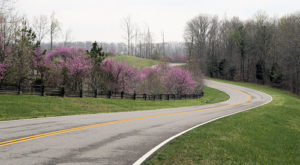 Everyone In Nashville Should Take This Under-Appreciated Scenic Drive