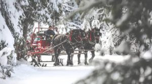 This 1-Hour Idaho Sleigh Ride Takes You Through A Winter Wonderland