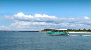 Take A Pontoon Boat To This Florida Island For A Secluded Afternoon Away From It All