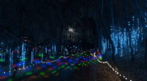 Everyone Should Take This Spectacular Holiday Trail Of Lights In Wisconsin This Season