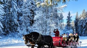 This Washington Sleigh Ride Takes You Through A Winter Wonderland