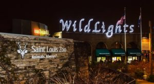 This Missouri Zoo Has One Of The Most Spectacular Christmas Light Displays You've Ever Seen