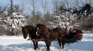 This 45-Minute Iowa Sleigh Ride Takes You Through A Winter Wonderland