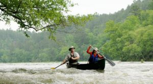 Here Are 9 Facts You Never Knew About Alabama's Longest Free-Flowing River