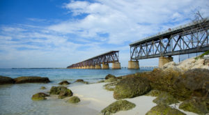 The Magnificent Bridge Trail In Florida That Will Lead You To A Hidden Overlook