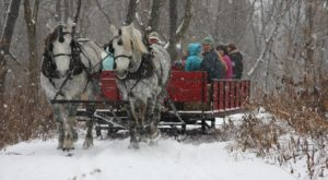This 20-Minute Illinois Sleigh Ride Takes You Through A Winter Wonderland