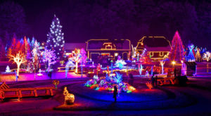 The Twinkliest Town In Virginia Will Make Your Holiday Season Merry And Bright