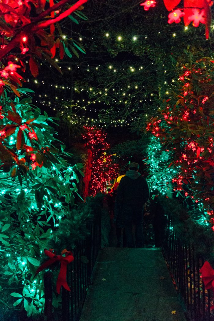 These 10 christmas light displays around tennessee are magical - Rock city enchanted garden of lights ...