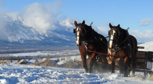 This Wondrous Sleigh Ride In Wyoming Is A Winter Dream Come True