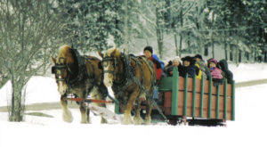 Soak Up The Best Of The Season With This Sleigh Ride In Maine