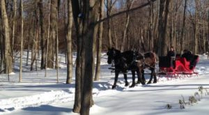 This Wondrous Sleigh Ride In Connecticut Is A Winter Dream Come True