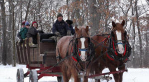 This 60-Minute Minnesota Sleigh Ride Takes You Through A Winter Wonderland