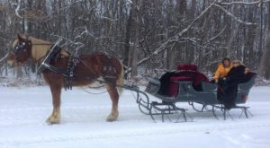 This 45-Minute Maryland Sleigh Ride Takes You Through A Winter Wonderland