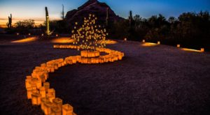 Every December, Over 8,000 Paper Lanterns Set This Arizona Garden Aglow