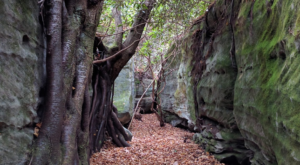Hike Through Maryland's Rock Maze For An Adventure Like No Other
