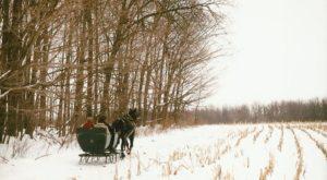 This 30-Minute Ohio Sleigh Ride Takes You Through A Winter Wonderland
