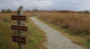 These 12 Wildlife Refuges In Rhode Island Have The Most Peaceful Trails You'll Want To Explore