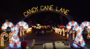 Take A Holiday Hayride Through The Most Decorated Neighborhood In Arizona