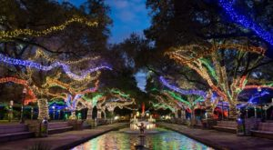 This Texas Zoo Has One Of The Most Spectacular Christmas Light Displays You've Ever Seen
