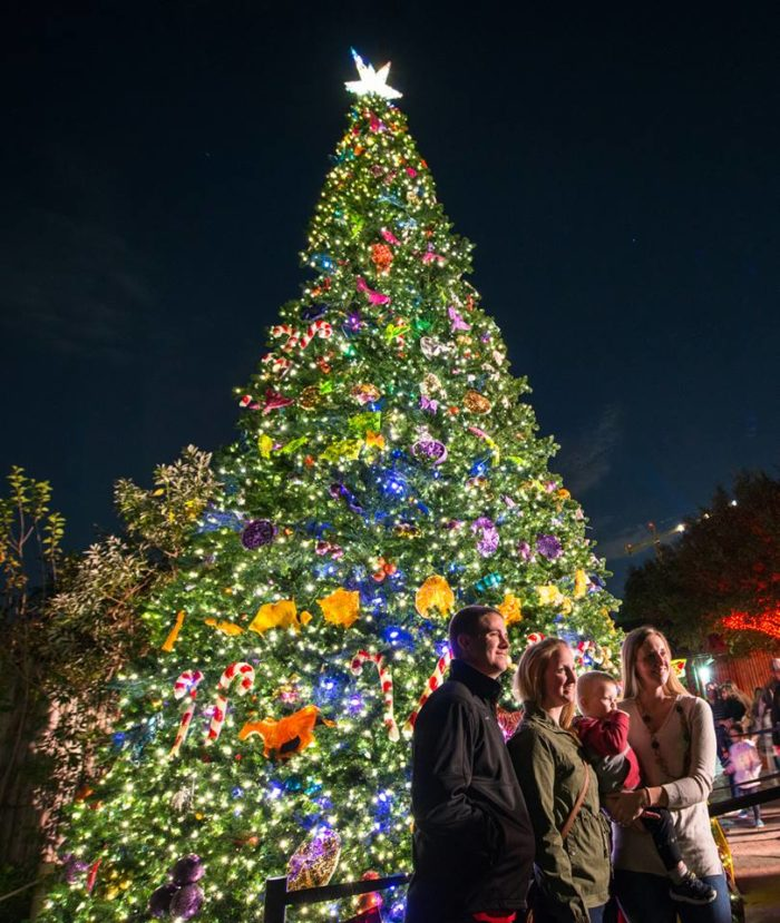 Houston Zoo Lights Is The Best Christmas Light Display In