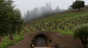 The Underground Wine Cave In Northern California You Have To Visit