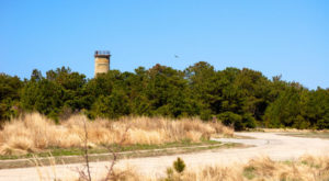 One Of The Last WWII Forts Is Right Here In Delaware And It's So Worth A Visit