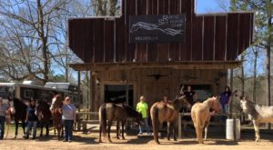 You'll Feel Like You're In The Wild Wild West At This Themed Campground In Louisiana