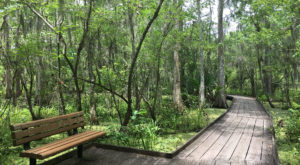 This Park Near New Orleans Has Endless Boardwalks And You'll Want To Explore Them All